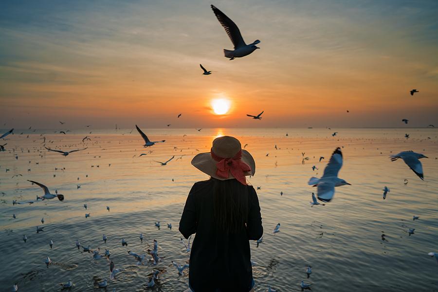 bang pu Roberto Trombetta, flickr