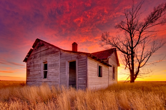 Life on the Prairie by David Kingham, flickr